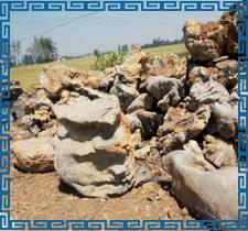 太湖石的成因特点